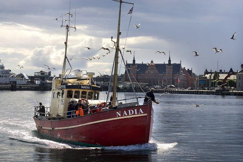 Fishing in Copenhagen Harbor and beyond